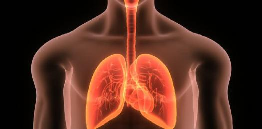 Pdwritten 2 With Lungs And Peripheral