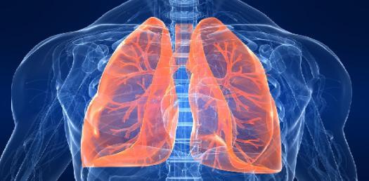 Mcq_mini3_(4)[1] Lung Volume