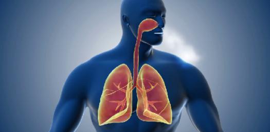 Pathology Respiratory System