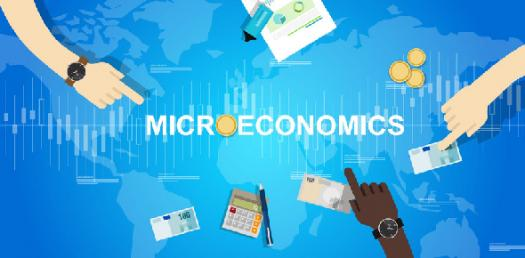 The Ultimate Quiz On Microeconomics Theory!