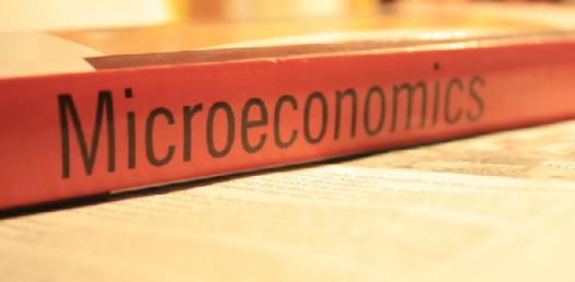 Enhance Your Knowledge On Microeconomics With This Quiz!