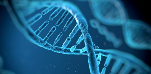 Genetics Hardest Trivia Questions! Quiz