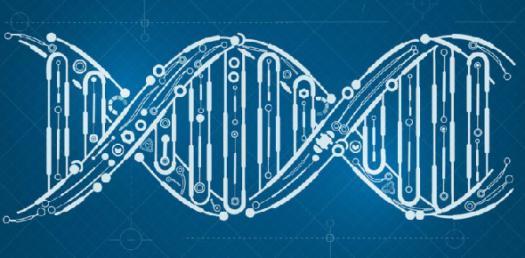 Definition Of Genetics Quiz Questions