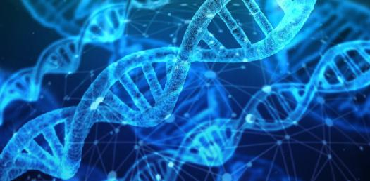 Genetics And Biotechnology! Trivia Questions Quiz