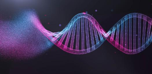 Chapter 11 Genetics Practice Quiz