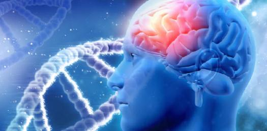Test Your Knowledge About Human Genetics! Trivia Quiz
