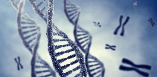 Genetics Pre-test