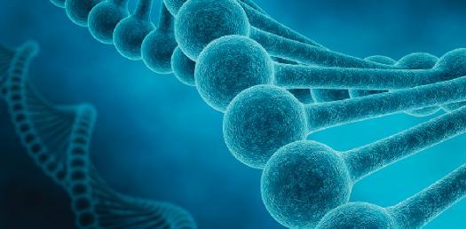 Applied Genetics Practice Exam