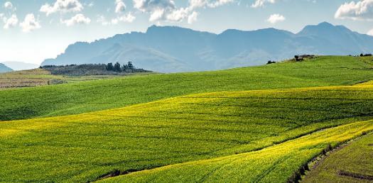 What Do You Know About Landform? Trivia Quiz