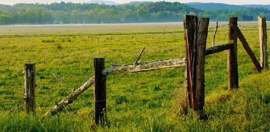 Land Use Planning, Registration And Laws! Hardest Trivia Quiz