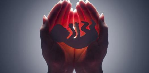 Ban Abortion: Alabama Strict Laws Trivia Questions! Quiz