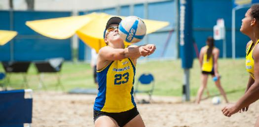 Test Your Knowledge About Volleyball Game