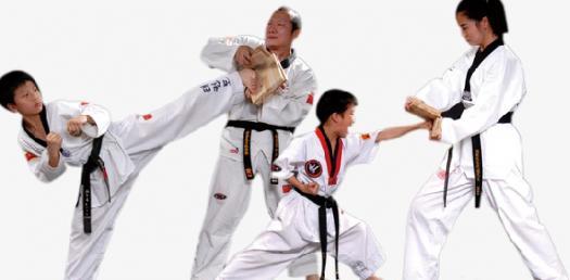 Martial Arts Discipline / Personality