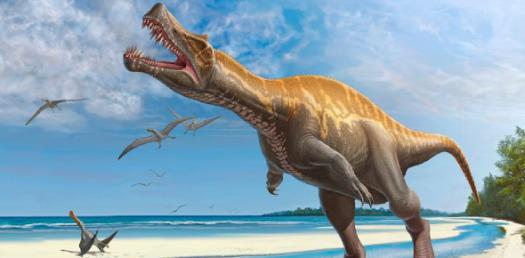 Quiz On Dinosaurs
