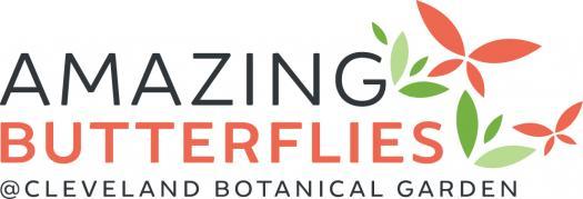 Amazing Butterflies Volunteer Orientation & Handbook Quiz