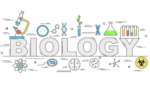 Latest Science Questions For 9th Grade Biology! Quiz