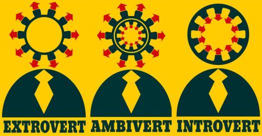 Anda Termasuk Introvert, Extrovert Atau Ambivert?