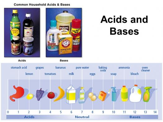 Do You Have Knowledge About Acids And Bases?