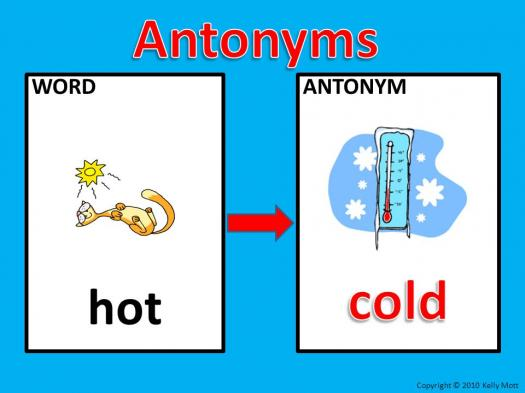 Test How Good Your Antonyms Skills Are!