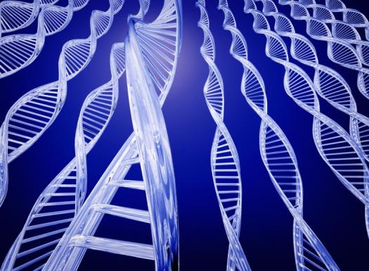 Introduction To Genes
