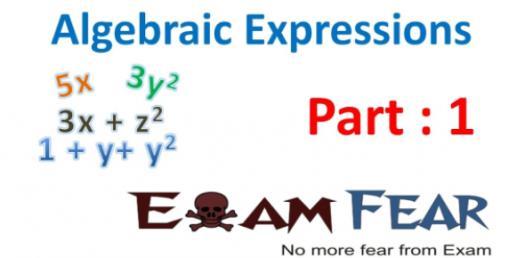 Algebraic Expression Practice Quiz
