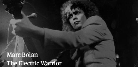 Electric Warrior Quiz