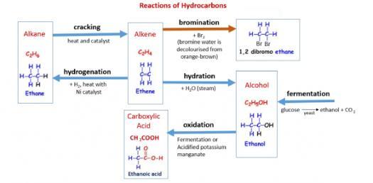 Organic Chemistry 2 Alkanes And Alkenes - ProProfs Quiz