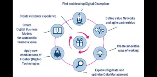 What Type Of Business Transformation Champion Are You?