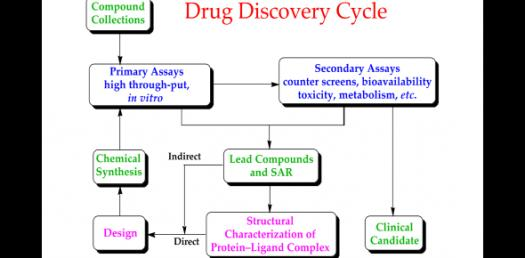 Drug: Activity, Phases And Classification! Trivia Questions Quiz