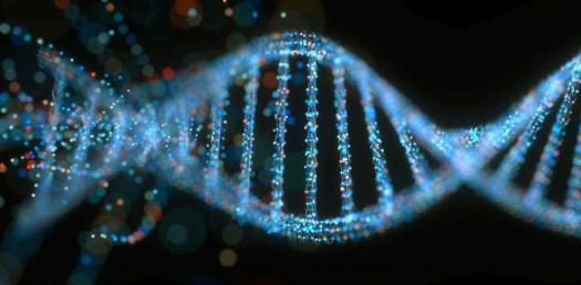 Quiz: Selection, Screening, And Analysis Of Recombinant DNA