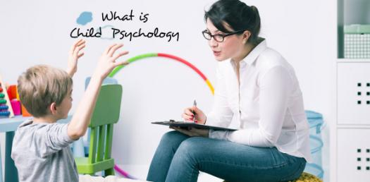 Child Psychology Trivia Quiz! Hardest Test