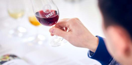 The Ultimate WSET L2 Review Test!