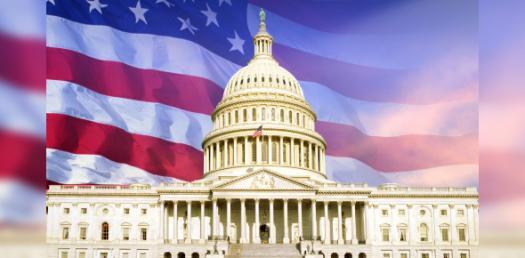 U.S. Government Terms! Trivia Questions Quiz