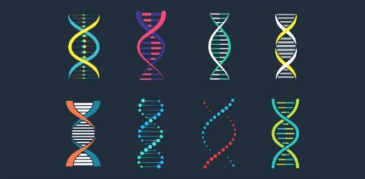 Take This Simple Genetics Trivia Quiz !