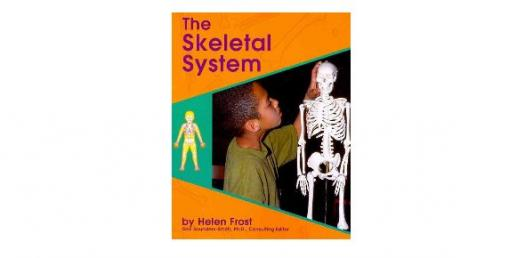 Chapter 7: The Skeleton System Trivia Quiz