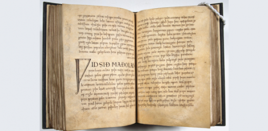 Trivia Questions Quiz: The Exeter Book And Beowulf!