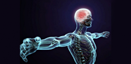 Aromatherapy For The Nervous System! Trivia Quiz