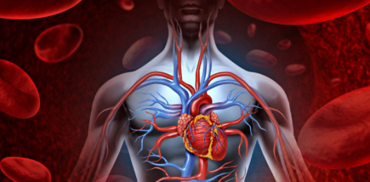 Aromatherapy: Heart And Blood Circulation! Trivia Facts Quiz