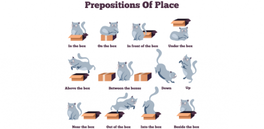 Can You Identify The Correct Preposition? Grammar Quiz