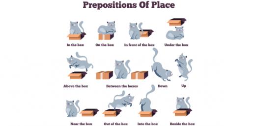 Identify The Correct Preposition! Grammar Trivia Quiz