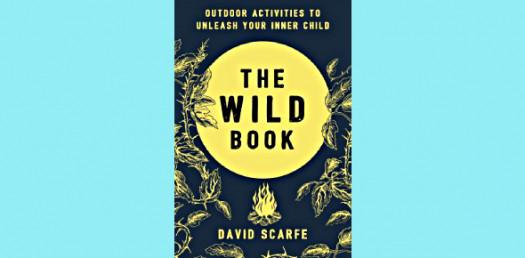 Into The Wild Book! Trivia Questions Quiz