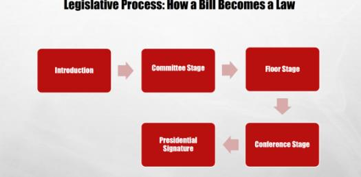 How A Bill Becomes A Law? Take This Trivia Quiz To Find Out!