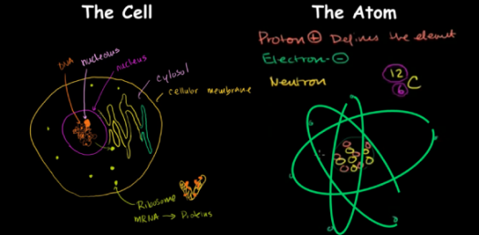 Ultimate Biology Trivia Questions On Cells And Atoms! Quiz