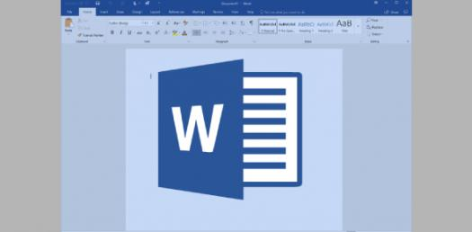 how much do you know about ms word application
