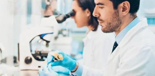 Quiz: Organisms Reproduction System