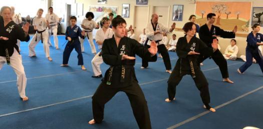 Taekwondo Quiz: Martial Arts Trivia