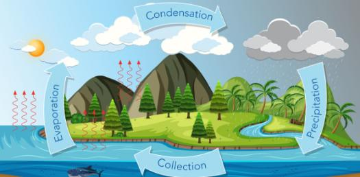 Water Cycle Quizzes Online Trivia Questions Answers