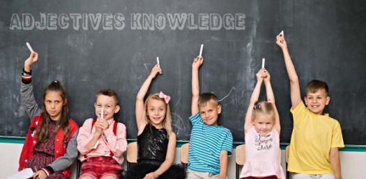 Test Your Adjectives Knowledge! Grammar Trivia Quiz