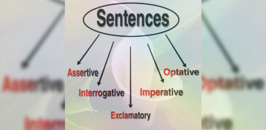 Grammar Quiz On Types Of Sentence!