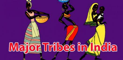 Trivia Facts And Questions On Major Tribes In India! Quiz